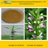 Motherwort Extract Powder GMP Certified Manufacturer