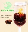 Blooming Tea Lily Fairy (Bai He Xian Zi)