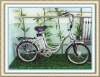Electric bicycle (FG-AL02)