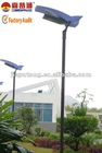 Unique integrated solar LED light street