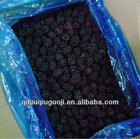 Hot sell 2012 new crop frozen blackberry
