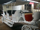 Comfortable horse cart with soft seats and hood