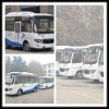 CNG BUS 19 seater