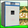 Automatic poultry Egg hatching machine