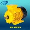 MS series motor