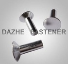 High quality countersunk head rivet