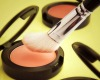 New generation cosmetics additives rice starch