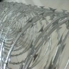 factory ! hot ! Galvanized barbed razor wire