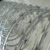 factory ! hot ! Galvanized barbed razor wire