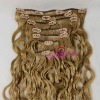 Loose Wave Indian Virgin Human Hair Clip In Hair Extension
