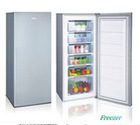 hot sale frost 200L freeze BD-200