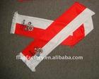 Euro2012 fan scarf