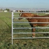 DM Galvanized pipe corral fence panels