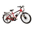 Electric Bike 250W