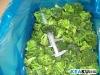 frozen broccoli and cauliflower 2012