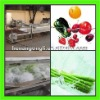 stainless steel leafy vegetable washing machine