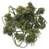 Ginseng flower herbal tea