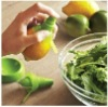 Stern Citrus Juice Sprayer