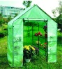 Mini Green house for flower