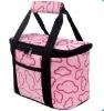 Multi-function Baby Lunch bag set/cooler bag