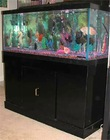 Ultra-clear tempered glass fish tank with black cabinet