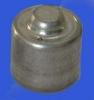 liquid sensor for thermostatic head