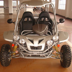 250cc New Buggy with EEC