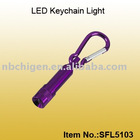 LED Light with Carabiner Keychain