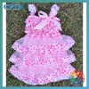 Push Baby Lace Dress Tutu Dress Princess Skirt