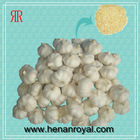 2010 Fresh Peeled Garlic Cloves
