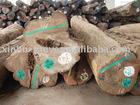 Burma pure teak logs