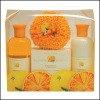 250ml natural orange Bath Gift Set