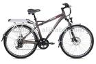 "20"" Folding Electric Bike - TDN20Z"