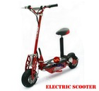 500W/800W/1000W Electric Scooter/Mini Scooter/E-Ssooter Wither EEC