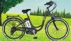 Alloy Electrical Bike