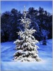 Water proof outdoor Christmas Tree LED canvas wall art
