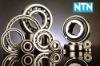 BEST/HOT SALE NTN Radial Ball Bearing