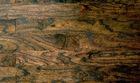 elm curved handsraped flooring