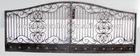 luxury wrought iron gate/door/fence/railing