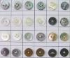 Garment Accessories shell button