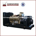 TPI Series Garden Automatic water pump