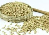 GENERAL BUCKWHEAT GRAIN 2012 CROP