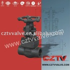 Forged Wenzhou Valve