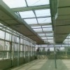 Tempered green house glass
