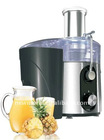 Power Juicer NJ002C