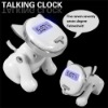 E3721 talking clock