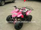 50cc/110cc EPA quad bike