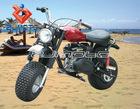 ZJMOTO SMALL 2 WHEEL ATV PITBIKE 2-WHEEL ATVs Snowmobile