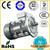 mini AC induction Reversible asynchronous motor