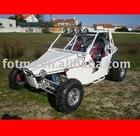 1100cc Dune Buggy (4x4)